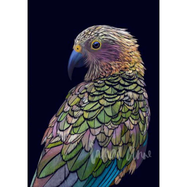 Kea, by Lamai Anne. Australian Art Prints. Green Door Decor. www.greendoordecor.com.au