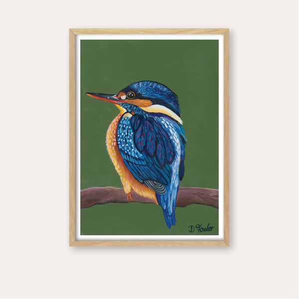 Kingy Kingfisher Fine Art Print - framed - by Daniela Fowler Art. Australian Art Prints. Green Door Decor. www.greendoordecor.com.au