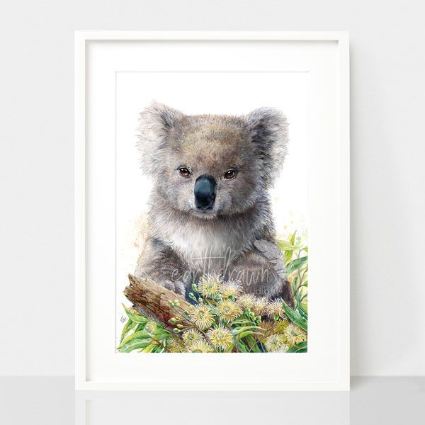 Koala and Eucalyptus Blossom print, by Earthdrawn Studio. Australian Art Prints. Green Door Decor.  www.greendoordecor.com.au