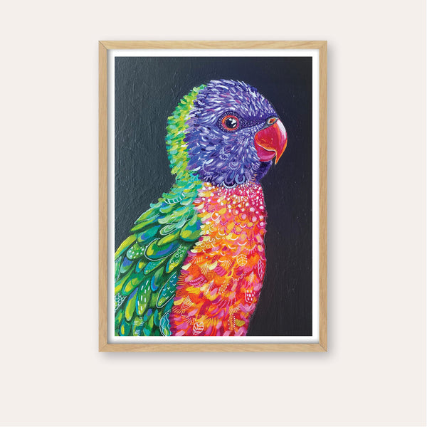 Lionel the Rainbow Lorikeet Fine Art Print - framed - by Daniela Fowler Art. Australian Art Prints. Green Door Decor. www.greendoordecor.com.au
