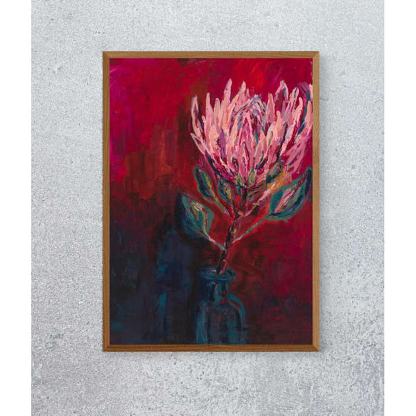 King Protea Limited Edition