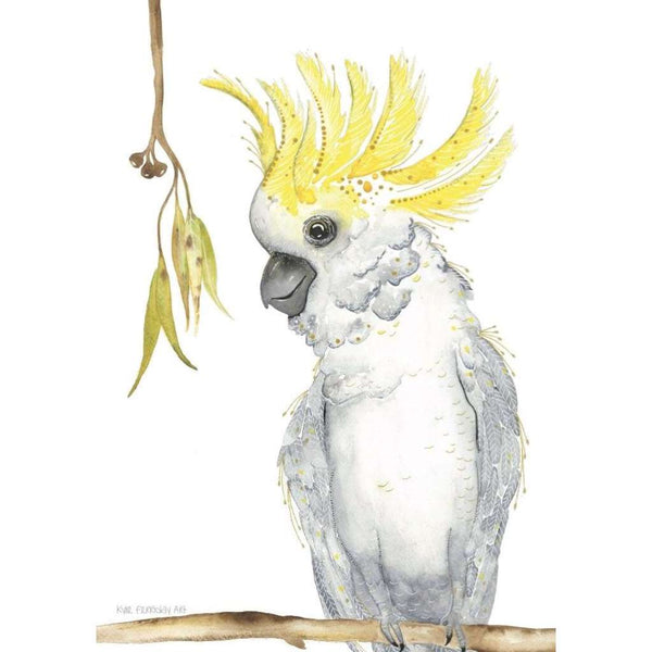 Mack the Sulfur Crested Cockatoo
