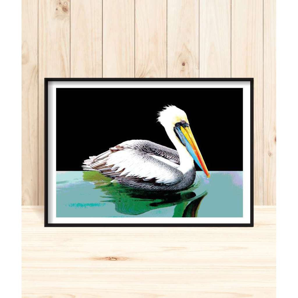 'Brown Pelican' Print