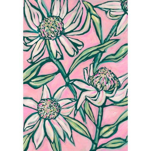 Pink Waratah Print - unframed - by Paula Mills Art. Australian Art Prints. Green Door Decor. www.greendoordecor.com.au