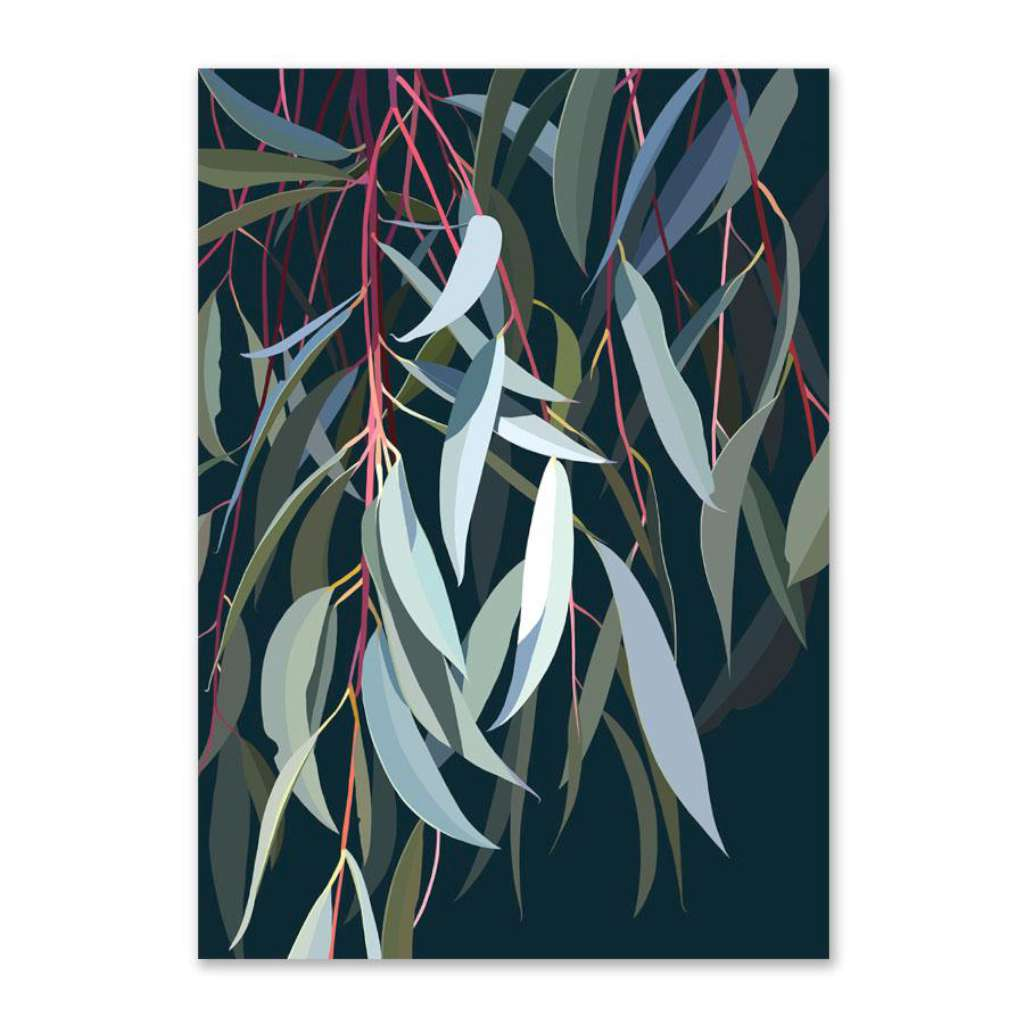 Riley's Hakea (Limited Edition)
