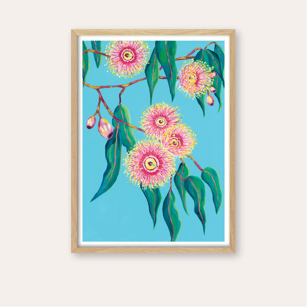 Sugar Gum Blossoms Fine Art Print - framed - by Daniela Fowler Art. Australian Art Prints. Green Door Decor. www.greendoordecor.com.au