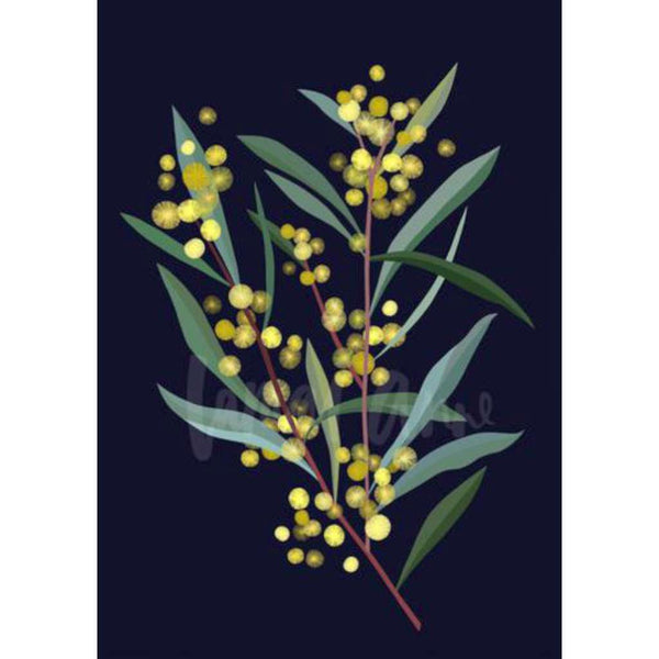 Wattle Branch on Navy (Limited Edition)