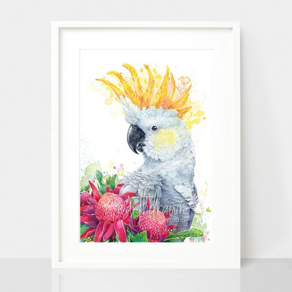 White Suphur Crested Cockatoo and Waratahs, by Earthdrawn Studio. Australian Art Prints. Green Door Decor. www.greendoordecor.com.au