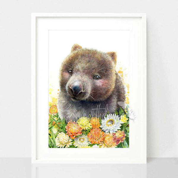 Wombat and Paper Daisies by Earthdrawn Studio. Australian Art Prints and Homewares. Green Door Decor. www.greendoordecor.com.au