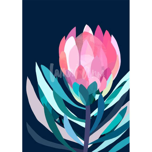 Cora Protea print, by Lamai Anne. Australian Art Prints. Green Door Decor. www.greendoordecor.com.au