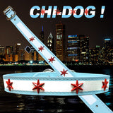 CHI-DOG Chicago Flag Collars