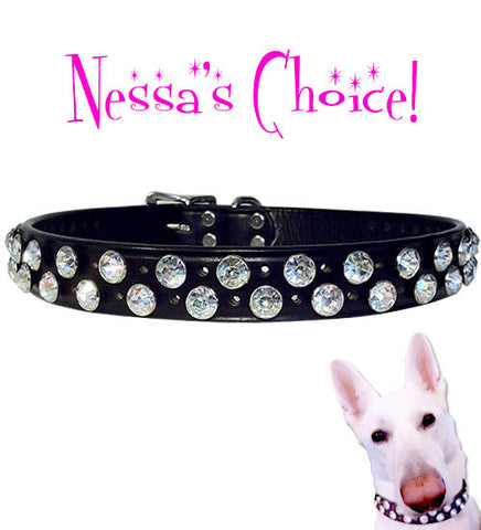 "Nessa's Favorite BUTCH BLING Acrylic Crystal 1"" Leather Buckle Collar 16""- 26"""