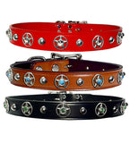 "ROPE STAR BEZELS & Bling Leather Buckle Collar 16""- 26"""