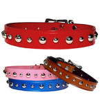 "Winston's Choice ... MIXED SIZE STUDS 1"" Leather Buckle Collar 16"" - 26"""