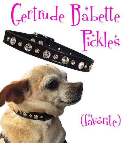 "Pickles' Choice - MIXED SIZE SWAROVSKI BLING Leather Buckle Collar - 10"" to 16"""
