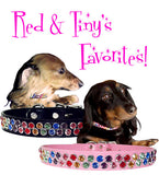 "Red 'N Tiny's Favorite DOUBLE SWAROVSKI RAINBOW BLING Leather Buckle Collar 12""-16"""