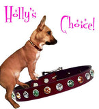 "Holly's REALLY BIG BLING 8mm Swarovski Leather Buckle Collar 10"" - 16"""
