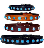 "SIMPLY TURQUOISE Leather Buckle Collar 12""- 26"""
