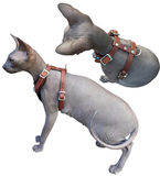 Dublin's Choice! CHOOSE-A-CONCHO Malibu Felt-Padded Leather Dog & Cat Harness with Large Concho and Studs - Extra Small