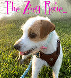 Zoey Rene's Favorite CHOOSE-A-CONCHO Malibu Felt-Padded Leather Harness - XSMALL