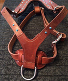 "CHOOSE-A-CONCHO Malibu Felt-Padded Leather Harness LARGE - chest 28"" - 37"" neck 18"" to 28"""