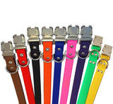"CHOOSE -A-BEZEL SPORTs 1"" Poly Clip Collar 17""- 26"""