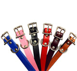 "LITTLE CHROME STUDS Leather Buckle Collar Petite 6""- 10"""