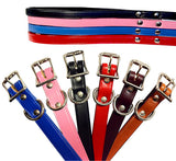 NO BLING Leather Town Leashes by Auburn