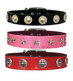 "CHOOSE-A-CONCHO 1"" Patent Leather Buckle Collar in 4 Colors 16""- 26"""