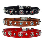"ROPE STAR BEZELS & Turquoise Stitched Leather Clip Collar 17""- 26"""