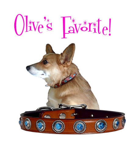 "Olive's ROPE BEZEL BONANZA Leather Buckle Collar 12""-16"""