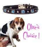 "Olive's (This IS My Happy Face) ROPE BEZEL & TURQUOISE Stitched Leather Clip Collar 13"" - 26"""