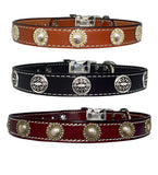 "CHOOSE-A-CONCHO 1"" Stitched Leather Clip Collar with Medium Conchos 17""- 26"""