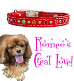 "Romeo's 2nd Great Love - MIXED SIZE SWAROVSKI Stitched Leather Clip Collar 13""- 26"""