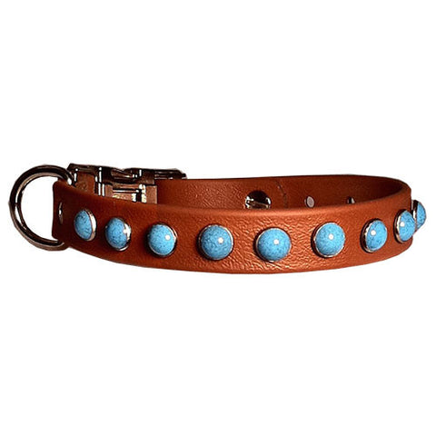 "WICKED BIG TURQUOISE SPORTs Poly Clip Collar 13""- 26"""