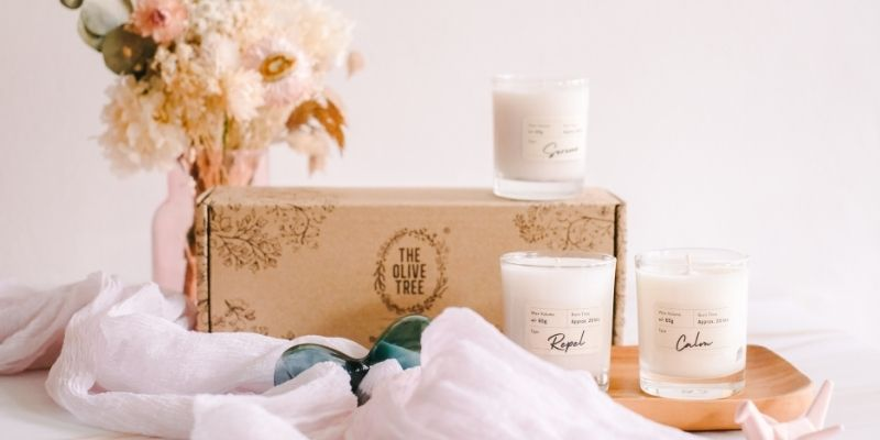 The Olive Tree Essential Oil Scented Candles