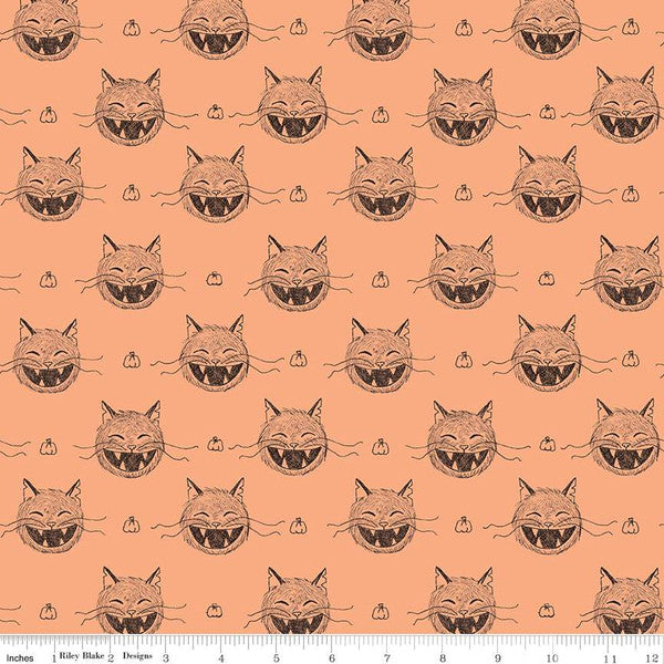 SCAREDY CAT HEADS - LIGHT ORANGE from the Scaredy Cat Fabric Line for Riley Blake Designs, Toad Hollow Fabrics