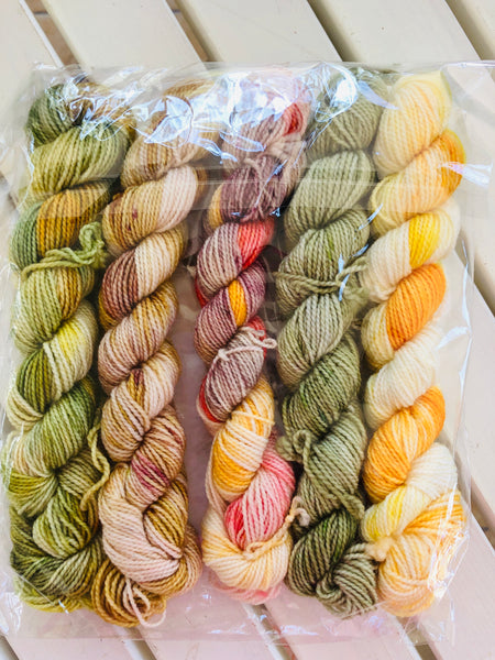 THE LOST WORDS COLLECTION  Mini Skein Set, Hand Dyed Yarn