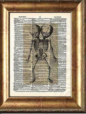 Siamese Twins Skeleton Art Print on Antique Book Page Vintage Illustration Weird