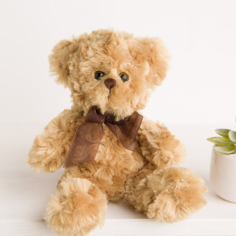 Baby's First Soft Toy Teddy Bear 8 Inch - Brown