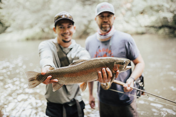Blue Ridge fly fishing with a guide
