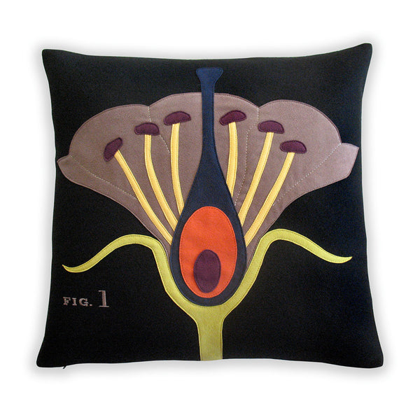 Botany Pillow ~ Science Project Collection