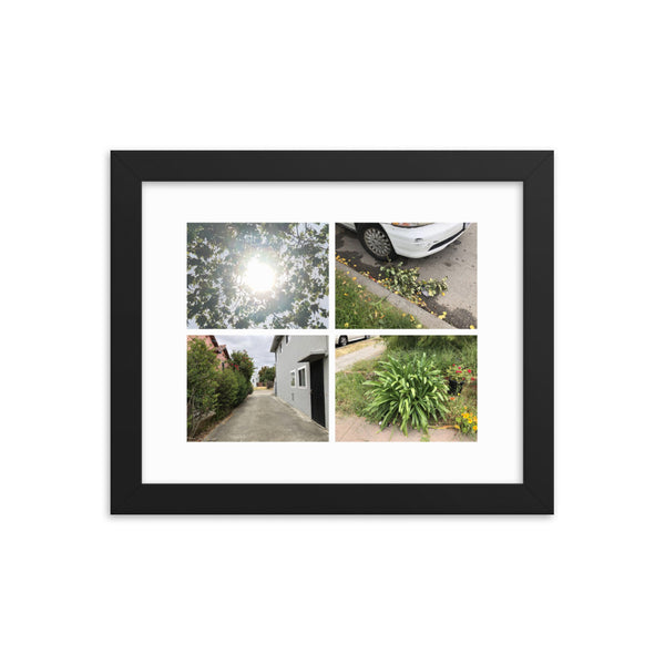 World Photography Print (Framed)