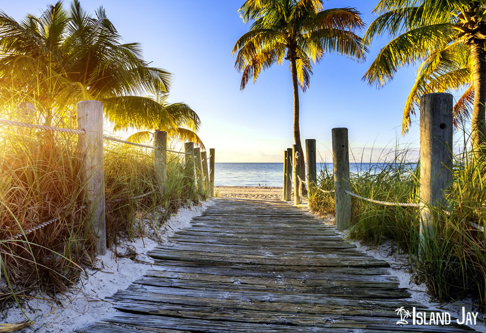 Walk Way to a Key West Beach