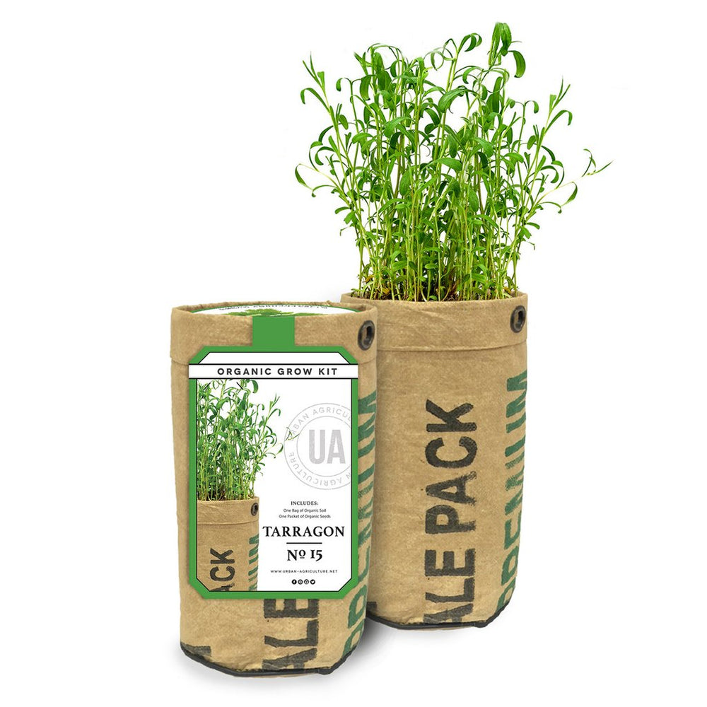 Organic Grow Kit -Tarragon
