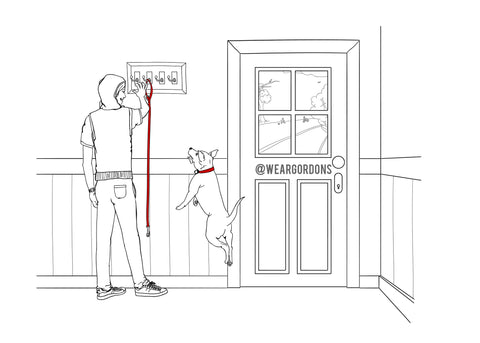 CHOOSING A TOP-QUALITY DOG LEASH - GORDON WEAR
