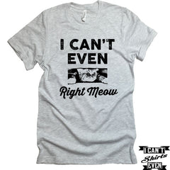 I Can't Even Right Meow T-Shirt. Crew Neck shirt. Pet Lover Tee