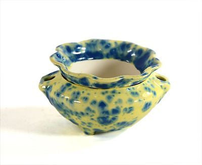 Mini Plus self watering African Violet pot ceramic planter Buttercup Blue