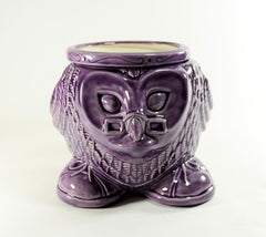 Wise Owl African Violet Pot Choose a Color