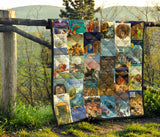Narnia Book Series Book Covers Quilt - Gifts For Reading Addicts